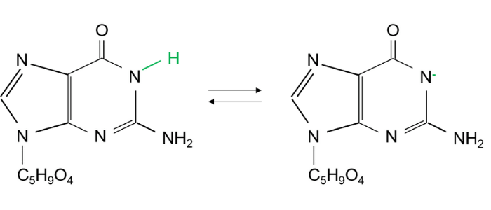アデニンの脱プロトン化