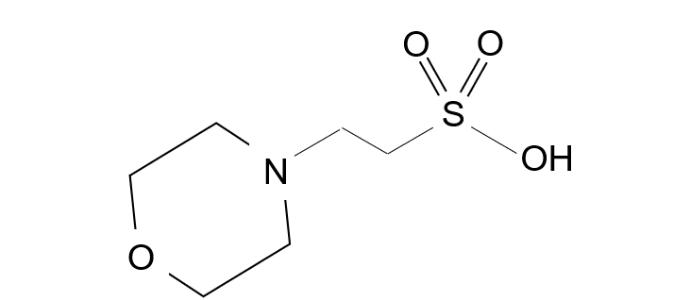 MESの構造式