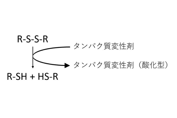 緩衝液に添加する変性剤の役割