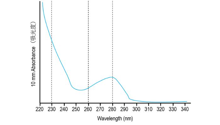 ナノドロップの正常な波形【タンパク質編】