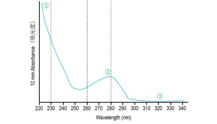 ナノドロップの正常な波形【タンパク質編の解説】