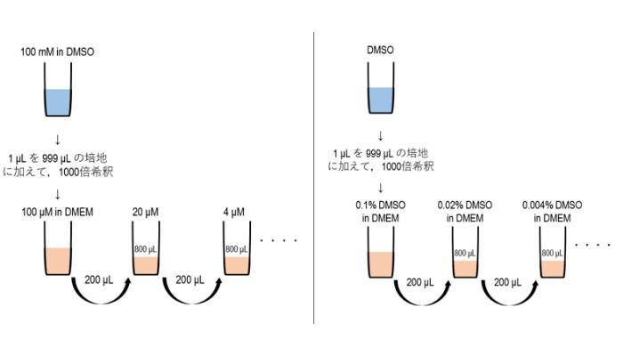 溶媒も同様に希釈系列を作製する